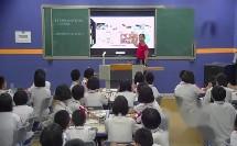 两栖动物和爬行动物-福建省长泰第一中学