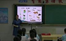 上册尝试对生物进行分类 -湖南