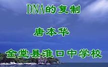 生物高一DNA的复制