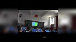 Section D_第一课时(二等奖)(科普版七年级下册)_T326617优质课