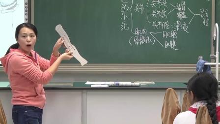 初中生物人教版八年级上册第一节《动物的运动》北京