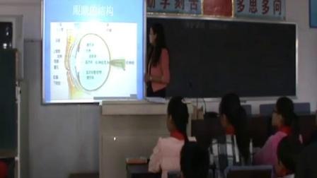 人教版版体育与健康三年级《保护眼睛 预防近视》用眼卫生_河北省优课
