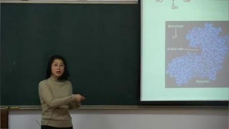 高校青年教师讲课竞赛获奖微课教学视频《计算生物学》魏