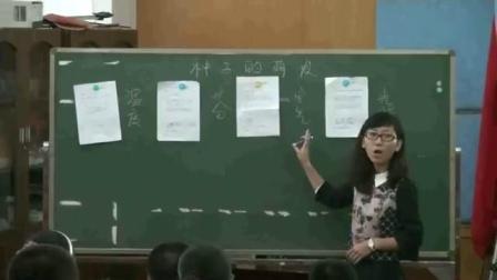 人教版《生物学》七年级上册第三单元第二章第一节《种子的萌发》深圳