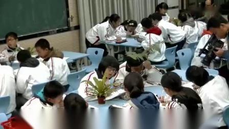 《生物学》人教版七年级上册第三单元第一章第一节《藻类、苔藓和蕨类植物》安徽省 - 安庆