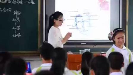 人教版七年级下册《输送血液的泵—心脏》江西省 - 赣州