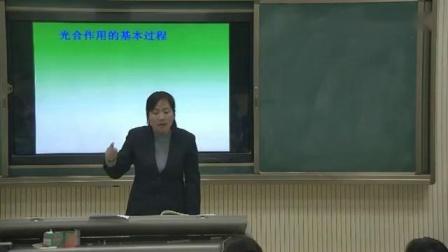 苏科版七年级生物上册第四章第一节《植物的光合作用》陕西省 - 渭南