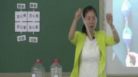 初中生物《输送血液的泵-心脏》北京