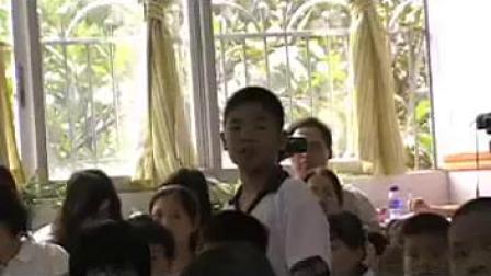 三年级综合实践《调查周围的环境》广州江梅