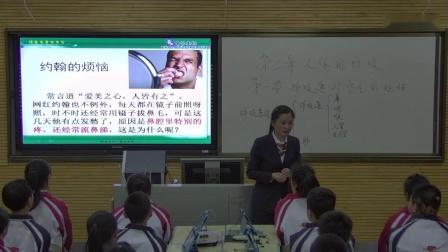 初中生物人教版七年级下册第一节呼吸道对空气的处理-珲春