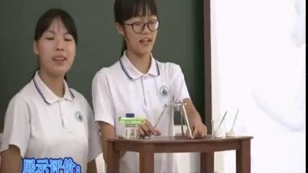 第五届全国初中化学实验教学微课视频《实验活动3 燃烧的条件》-广东