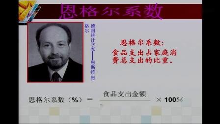 高中思想政治人教版必修1《消费及其类型》天津