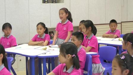 四年级科学《生的食物和熟的食物》优秀公开课视频-执教刘老师
