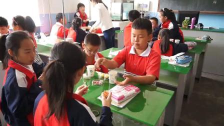 四年级科学《生的食物和熟的食物》优秀课堂实录-骨干陈老师