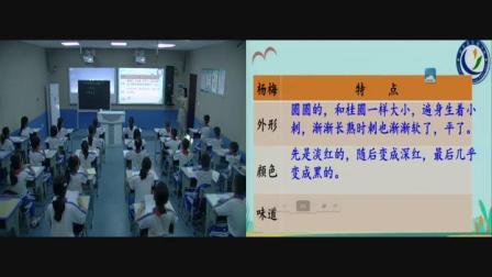 《习作:我们眼中的缤纷世界》部编版小学语文三上-海南-张丽霞