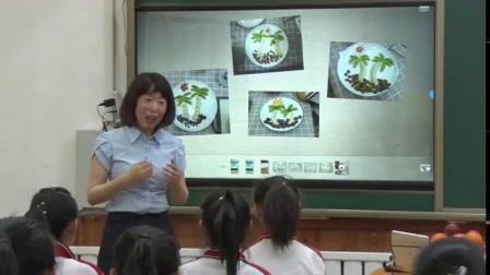 小学综合实践活动《学做简单的家常餐——制作水果拼盘》优质课教学视频20,辽宁省