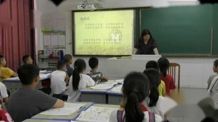 小学综合实践活动《来之不易的粮食》优质课教学视频7,安徽省