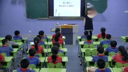 小学综合实践活动《跟着节气去探究》优质课教学视频51,福建省