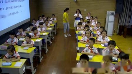 小学综合实践活动《来之不易的粮食》优质课教学视频11,安徽省