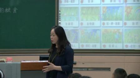 小学综合实践活动《来之不易的粮食》优质课教学视频14,内蒙古