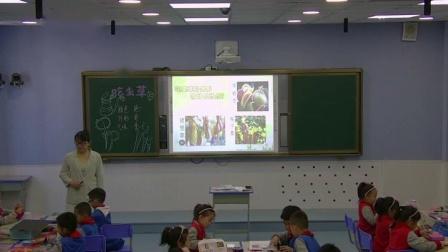 部编二年级下册《吃虫子的植物》优质课视频+PPT课件,冀美2011课标版