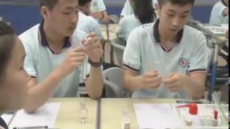 杭州市科学名师观摩课初三科学《第1节物质的变化》江城中学冯晓卿
