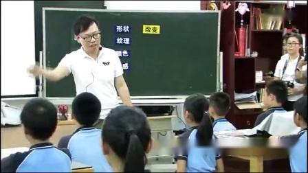 湘美课标版四年级下册5.《蔬果的联想》-佛山