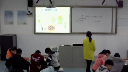 人教2011课标版生物 八上 第六单元第一章第一节《尝试对生物进行分类》课堂教学视频-朱婷婷