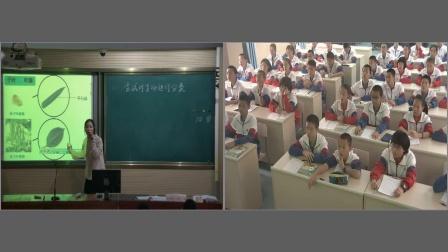 人教2011课标版生物 八上 第六单元第一章第一节《尝试对生物进行分类》课堂教学视频-陈媛媛