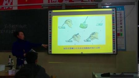 人教2011课标版生物 七上 第二单元第一章第二节《植物细胞》课堂教学视频-郭雪梅