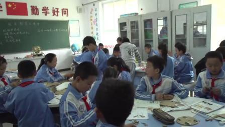 《设计制作小赛车》教科版小学科学五上-甘肃-苏宝林