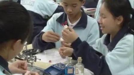 建兰中学徐国鉴初二科学《3.3化学方程式(第一课时)》