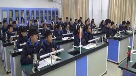 2017年初中生物课堂教学优质课评比视频录像《第二节动物体的结构层次》郑州市58中