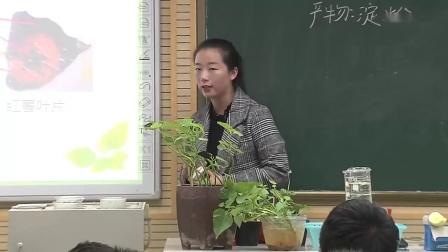 2017年初中生物课堂教学优质课评比视频录像《第四章 绿色植物是生物圈中有机物的制造者》张(郑州市)