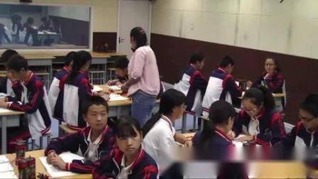 2017年初中物理课堂教学优质课比赛录像视频《串联和并联》(郑州市)