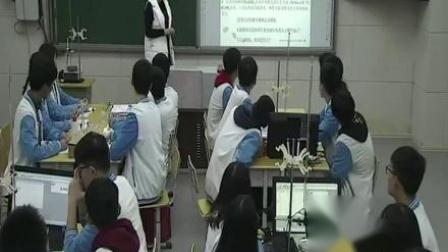 2017年高中化学课堂教学教师优质课比赛视频《电解质在水溶液中的反应》余柳