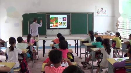 《花、果实和种子》优质课展示(教科版小学科学六年级下册)