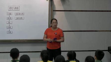 《2 消化与吸收》优质课评比(湘科版小学科学六年级上册)