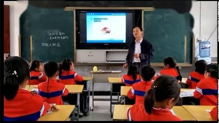 《8 不倒翁》优质课案例教学实录(粤教粤科2017版小学科学二年级下册)