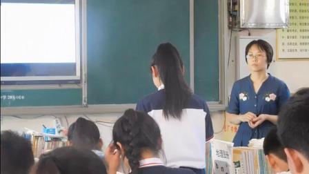 道德与法治八下6.5《国家司法机关》优质课教学实录-王文涛