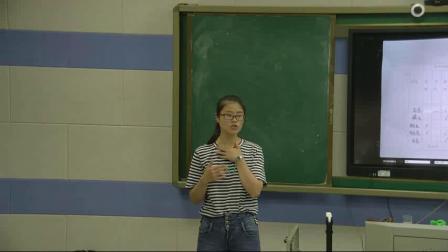 《3. 认识岩石》优质课视频-青岛2001版小学科学四年级下册