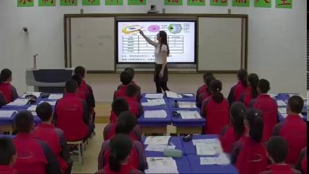 人教2011课标版生物 八上 第五单元第四章第二节《细菌》课堂-谢玉红