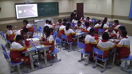 《10. 做一块卵石》优质课评比视频-青岛五四学制2001版小学科学五年级下册