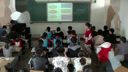 统编版道德与法治九下4.1《中国的机遇与挑战》课堂实录-李冰