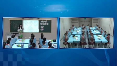 人教版四年级美术下册《走进春天》获奖课堂实录-教学能手安老师