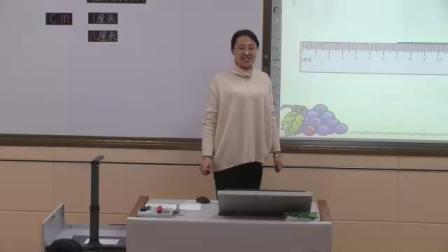 《信息窗一(厘米的认识)》优质课-青岛五四学制版小学数学一年级下册